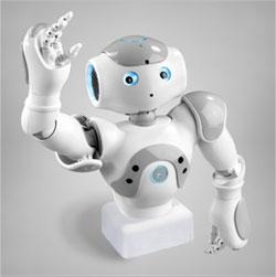 NAO T14 روبات انسان نمای نائو نسخه