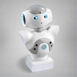 NAO T2 ربات انسان نمای نائو نسخه