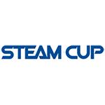 مسابقات جهانی استیم کاپ